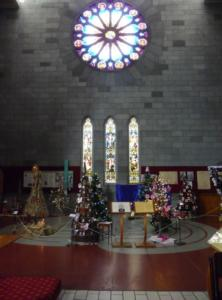 Cathedral Christmas Trees (2)